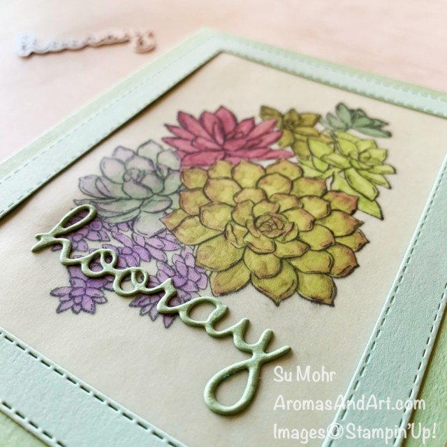 By Su Mohr; Click aromasandart.com to go to my web site for details! Featuring: Well Written Dies,Stitched Rectangles Dies, Simply Succulent Stamp Set; #simplysucculents #succulents #succulentsoncards #handmadecards #handcrafted #diy #cardmaking #paper crafting #sumohr #aromasandart #cardtechniques #vellumoncards #stampinblends #stampinup #lastchanceproducts #lastchancesale #retiringproducts