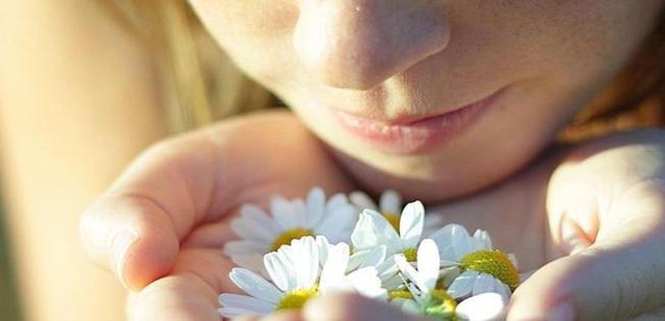 Resultado de imagen para La efectividad del olfato humano