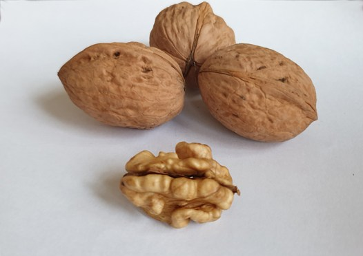 walnuts for you