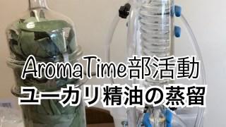 精油の蒸留会を開催する理由と楽しみ(AromaTime部活動)