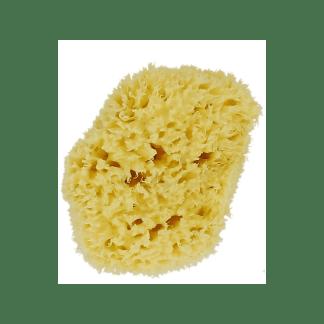 Esponja marina natural