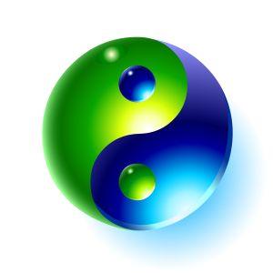 Qi Gong Tai Chi Symbol Body Energy Work