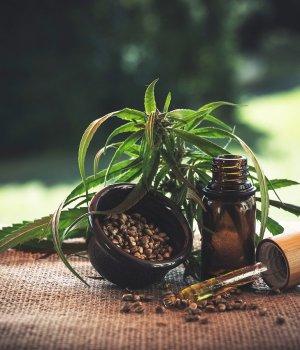 Le cannabis peut aider à lutter contre le coronavirus, selon une étude