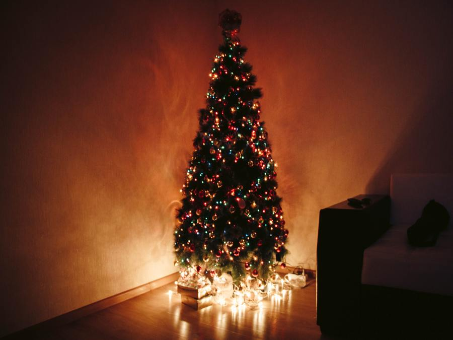 Christmas In My House - Christmas Tree