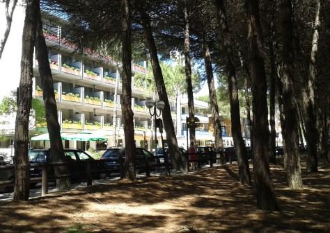 Pineta -Costa dei pini- Pinarella di Cervia