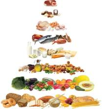 foodball- piramide alimentare