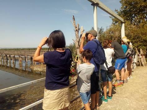 Trasimeno attività bambini oasi naturalistica la valle osservazione uccelli