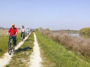 40 idee per un weekend con i bambini in Italia parco delta del po emilia romagna