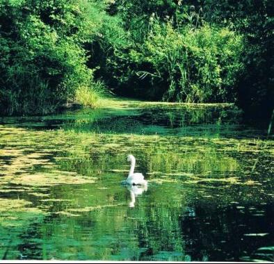 43 idee per un weekend con i bambini emilia romagna parco delta po cubo magico