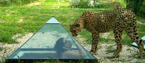 Idee weekend con i bambini in italia marche parco zoo falconara marittima