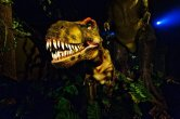 dinosauri_zoomarine_lazio2