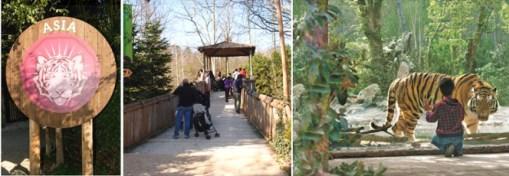 Parco natura Viva-Asia