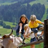 Nella bella fattoria: 35 agriturismi per famiglie dove i bambini fanno vita di campagna