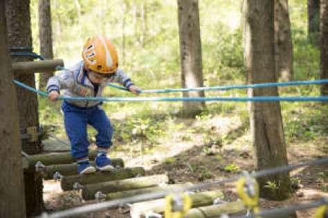 40 idee per un weekend con i bambini in italia parco_avventura_cingoli marche