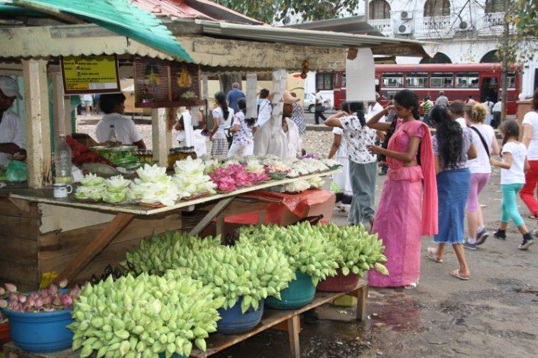 Sri Lanka mercato