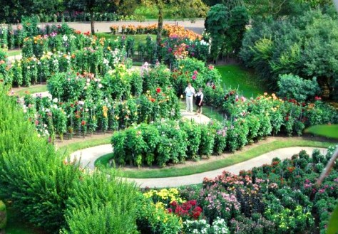 Giardini Villa Taranto-vista