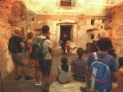 Mag-museo alto garda-visite guidate