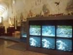 Museo dei Grandi Fiumi-videoinstallazioni-ph.originalitaly