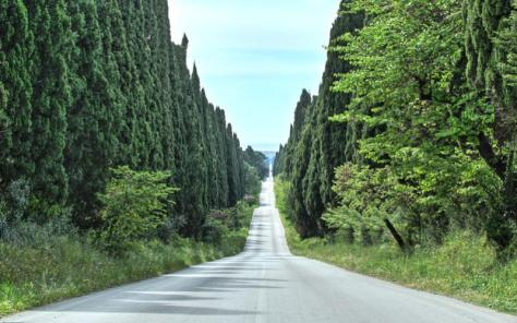 vacanze bambini toscana agriturismo la prugnola strada dei cipressi