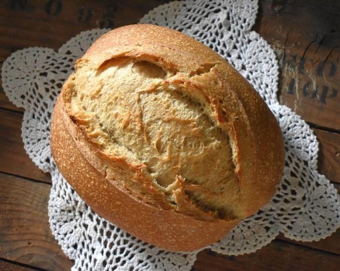 no knead 10