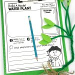 Plant Stem Activities For Kids Making Models Of Adaptations Around The Kampfire