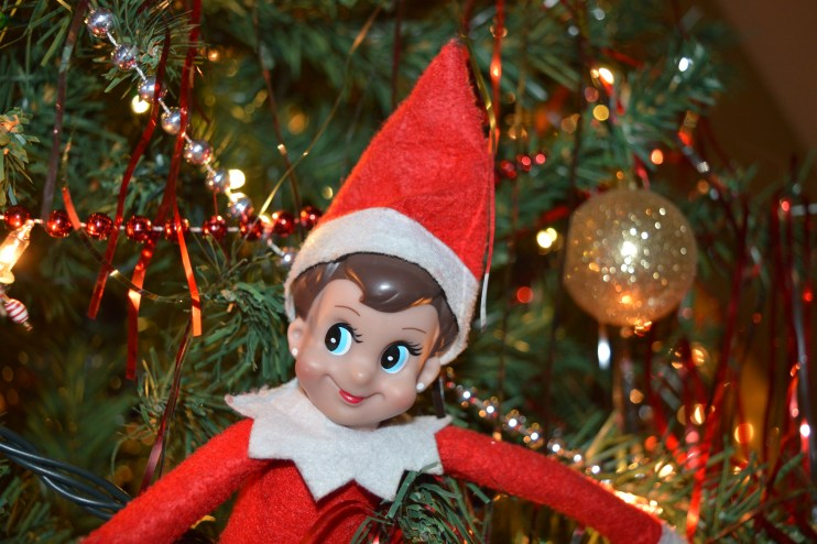 Jingles the Elf causing mischief in the Christmas tree at the Callaghan household