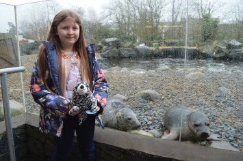 Spotty the seal meets his friends at Exploris Aquarium in Portaferry