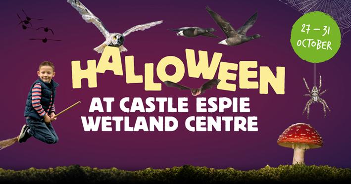Halloween at Castle Espie