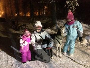 Santa Claus Holiday Village - Husky Sled Ride