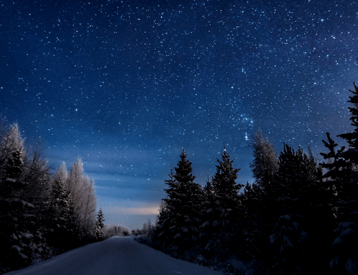 Starlit Sleigh Ride with Rukapalvelu Safarihouse in Ruka