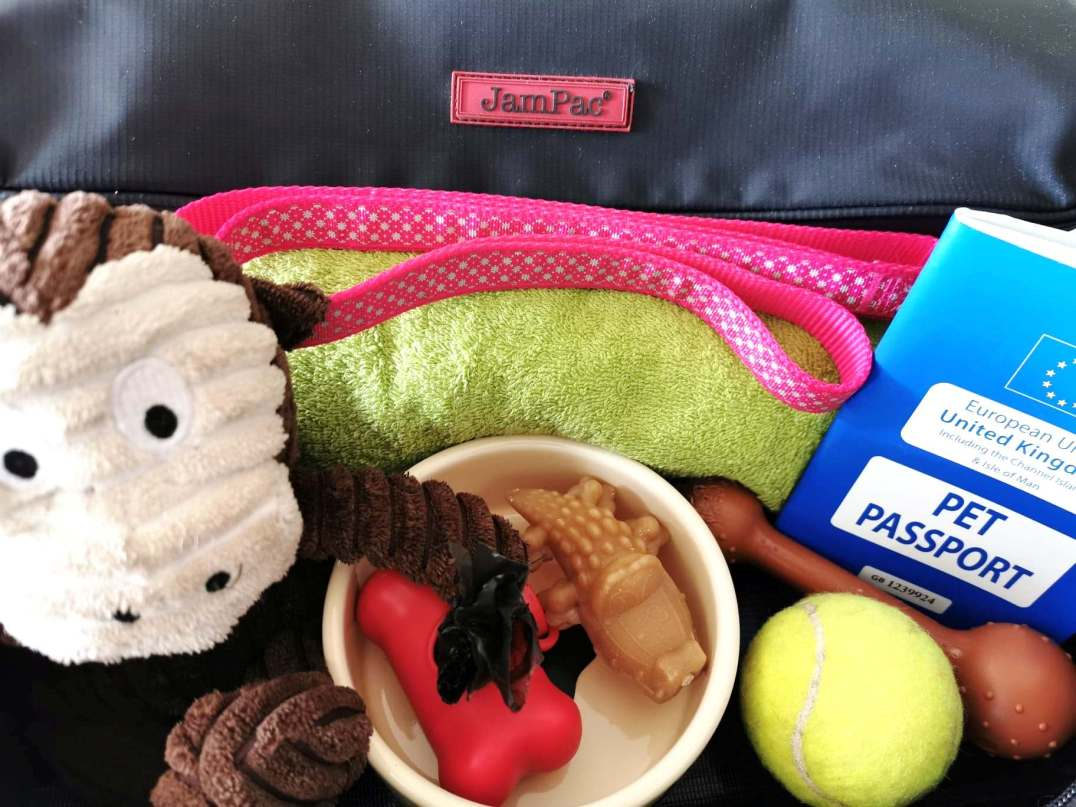 LeanPac essentials for boarding a ferry with your dog