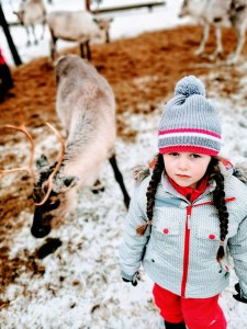 Discussing fascinating facts about reindeer at Vaara Reindeer Farm in Ranua, Finnish Lapland