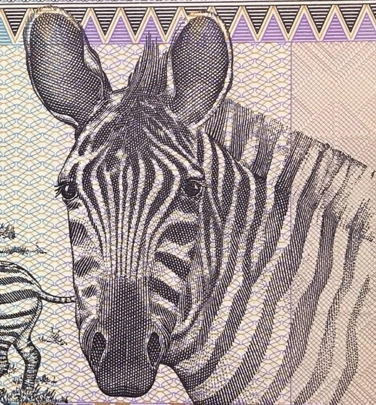 closeup detail of Rwanda 100 Francs Banknote, Year 1989 front, featuring zebra
