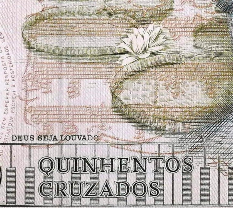 closeup detail of Brazil 500 Cruzados Banknote front, featuring lily pads, musical score and piano keyboard