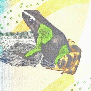 Madagascar 100 back (2), featuring painted mantella frog