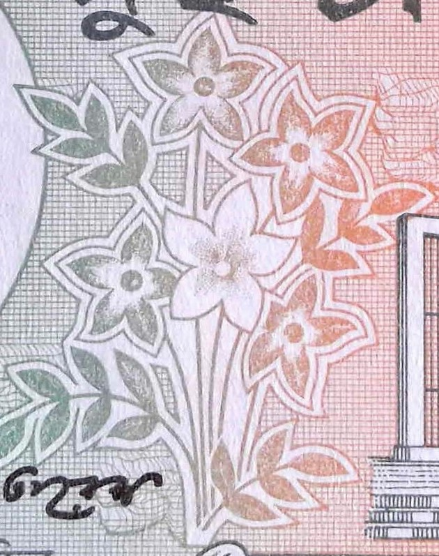 closeup of flowers details on Bangladesh 2 Taka Banknote, Year 2009 back