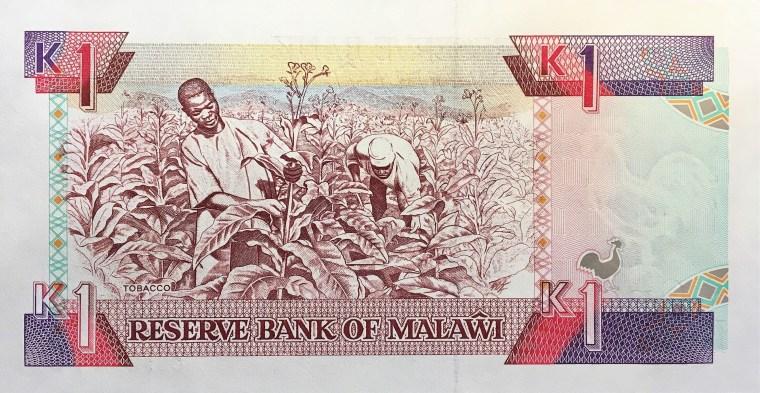 Malawi 1 kwacha banknote (1993) reverse, featuring farmers harvesting tobacco