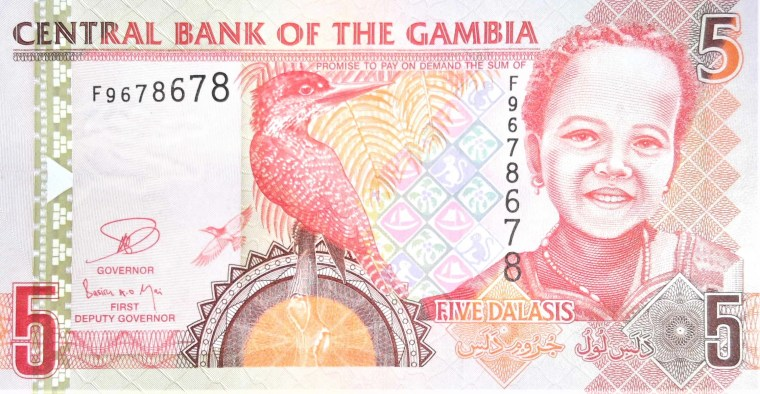 Gambia 5 dalasis banknote front featuring girl and kingfisher bird
