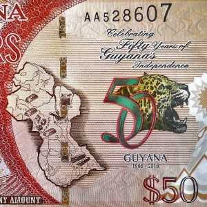 Guyana 50 Dollars 2016 banknote back (2), Independence celebration