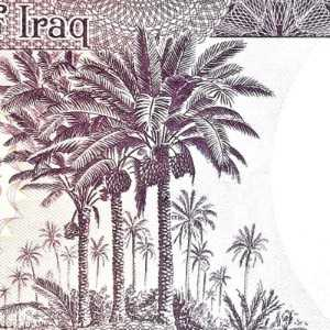 Iraq 50 Dinar banknote back (2) featuring palm tress