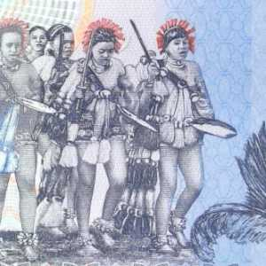 closeup detail from swaziland 10 lilangeni banknote, year 2014 back
