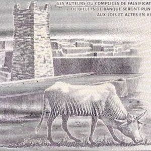 closeup detail from mauritania 100 ouguiya banknote front featuring ox