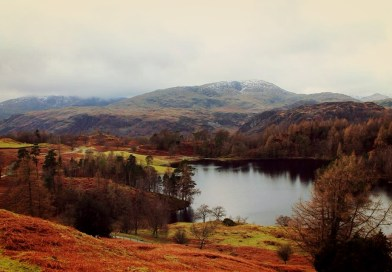 tarn hows winter