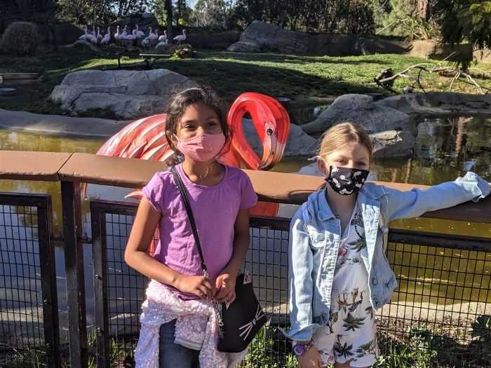 Young girls in front of flamingos