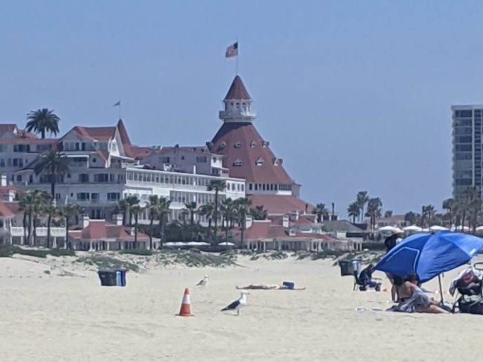 The view of the Hotel del Coronado from the beach