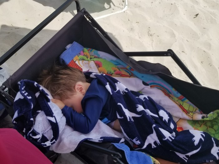 A toddler sleeping in a wagon on the beach