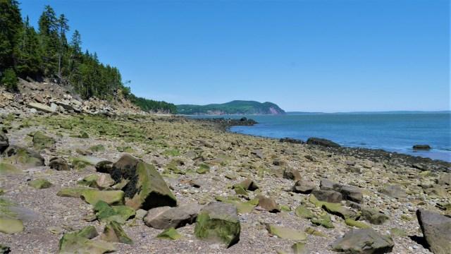 Fundy parc national nouveau-brunswick blog voyage arpenter le chemin