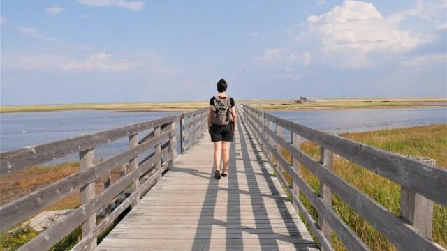 Kouchibouguac parc nation nouveau-brunswick acadie arpenter le chemin