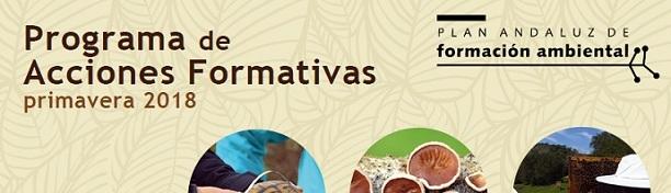 plan_formacion_ambiental