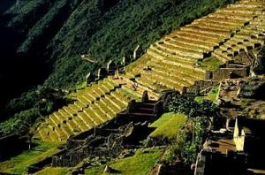 cuzco_machu_picchu_andenes